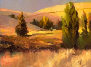 No, this has nothing to do with socks. But it's peaceful, and we need some peaceful right now. Homeland 1 by Steve Henderson.
