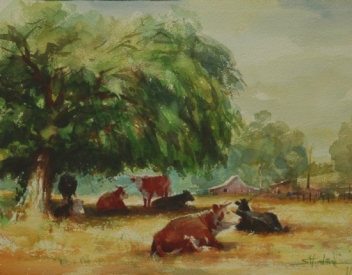 cows ruminating in country rural field watercolor steve henderson